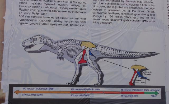 Dinosaurieben