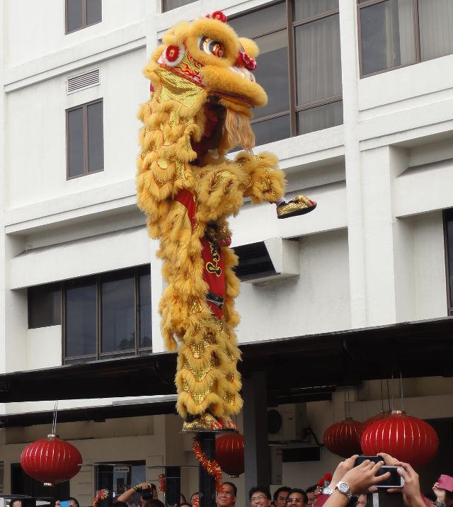 6 - Mera kinesikst nyar
