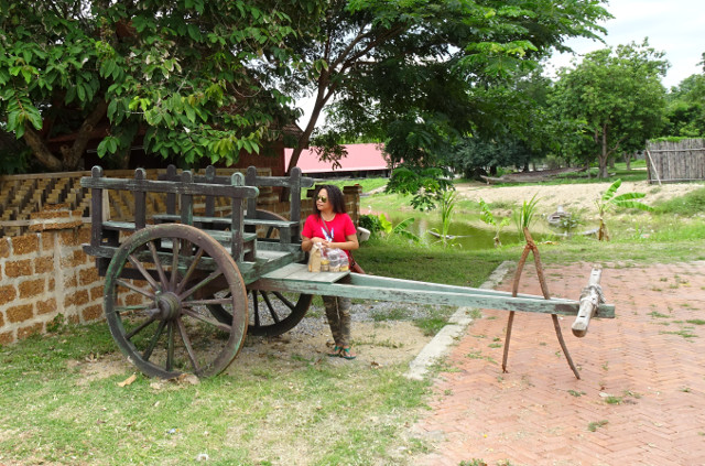 18-vagn